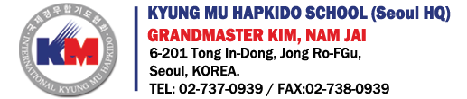Hapkido school in Seoul Korea